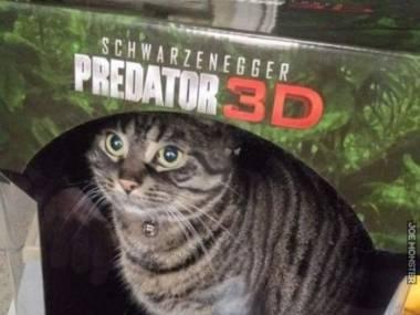 Nowy predator wygląda cholernie realistycznie
