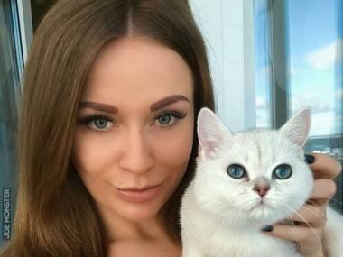 Gdybym mógł stać się zwierzakiem, to chciałbym być tym kotkiem