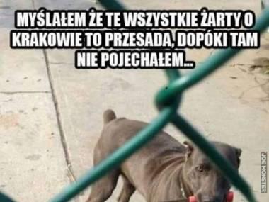 Kraków - miasto desperacji