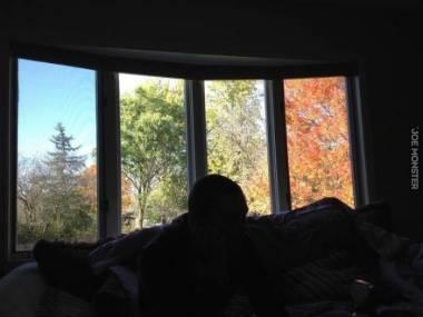 Cztery pory roku za oknem