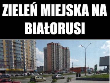 Zieleń miejska na Białorusi