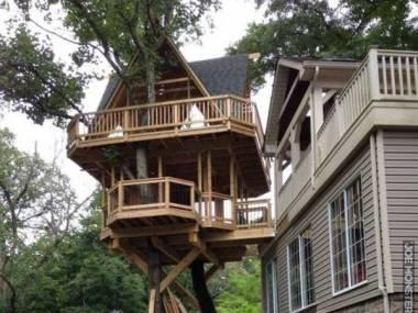 Wysokobudżetowy domek na drzewie