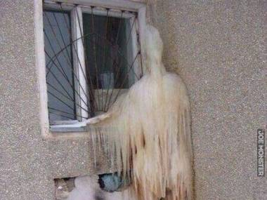 Wpuść mnie do środka, zamarzam tu