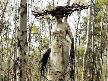 Leśna wiedźma
