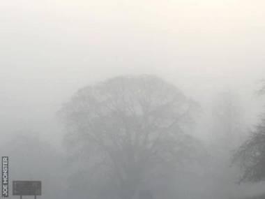 Spotkanie we mgle