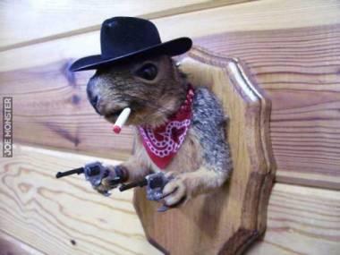 Nie był najszybszym wiewiórem na dzikim zachodzie