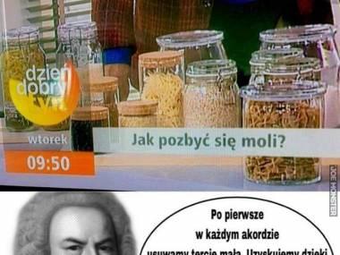 Bach radzi