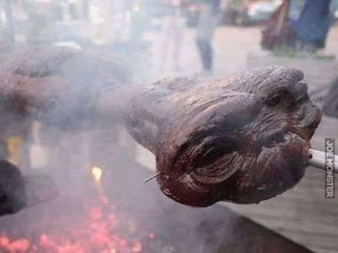 Gdyby E.T. wylądował w Europie wschodniej