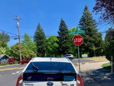 Fotografia wykonana w Kalifornii. Zgadnij skąd pochodzi właściciel auta