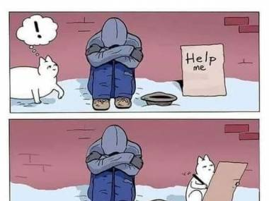 Kot nie umrze z głodu