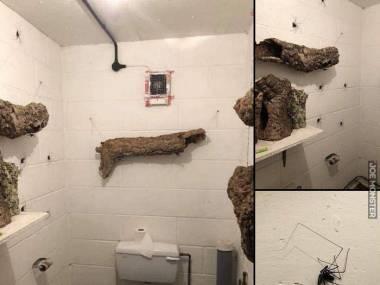 Dziwnie bym się czuł oglądając takie ozdoby w toalecie