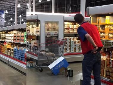 Pracownik supermarketu poluje na nieproszonego gościa