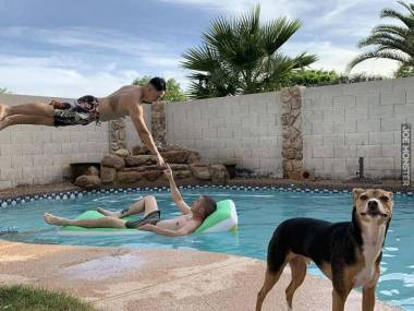 Stworzenie nad basenem