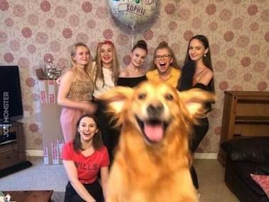 Wszyscy załapali się na zdjęcie