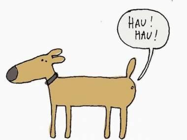 Tam gdzie psy...