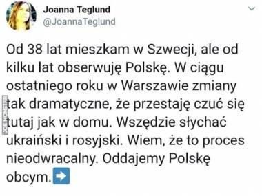 Pół-Polka pół-Szwedka wie lepiej