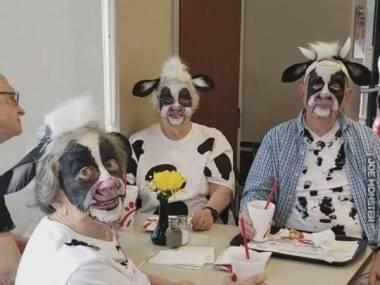 Nie chciałbym dostać mleka od tych krów