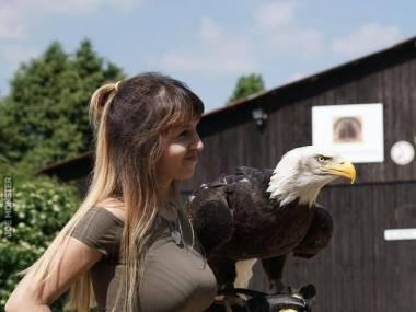 Dziewczyna z ptakiem
